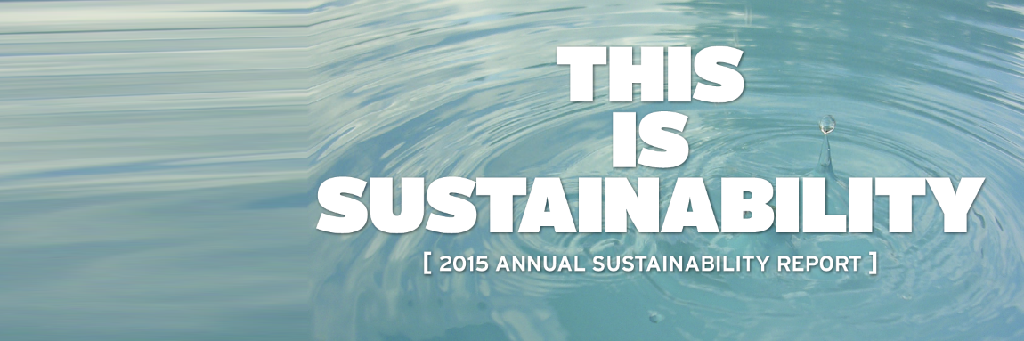 Learn about York's sustainability achievements in the 2015 Annual Report.